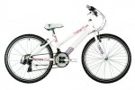 Raleigh Krush 24 Girls Mountain Bike