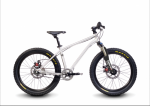 2016 Early Rider 20 Belter Trail 3 Suspension