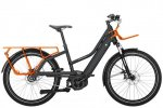 2019 Riese & Muller Multicharger Mixte City Grey