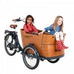 Babboe Curve E Cargo Bikes