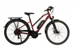 2020 Raleigh Array Open Derailleur Electric Bike
