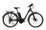 2020 Raleigh Motus Lowstep Derailleur Electric Bike