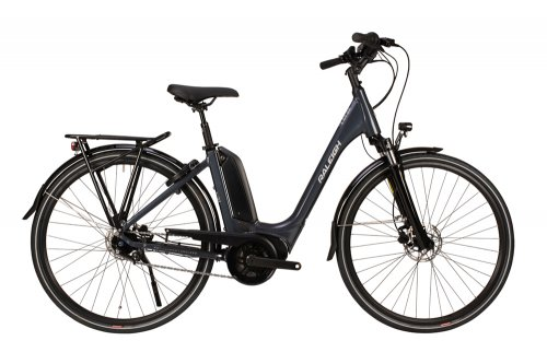 2020 Raleigh Motus Tour Lowstep Hub Electric Bike