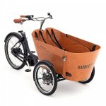 2020 Babboe Carve Mountain Electric Cargo Bike
